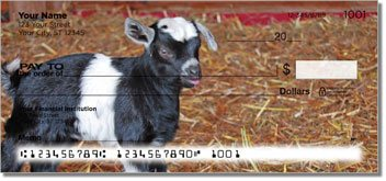 Baby Goat Design Checks