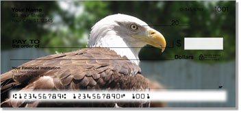 Bald Eagle Checks
