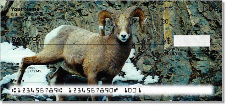Big Horn Sheep Personal Checks