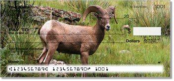 Big Horn Sheep Design Checks
