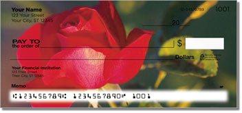 Blooming Rose Checks