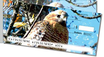 Hawk Side Tear Personalized Checks