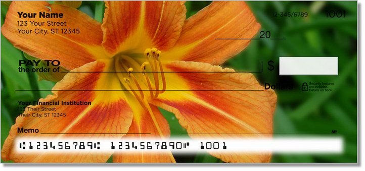 Lily Personal Checks